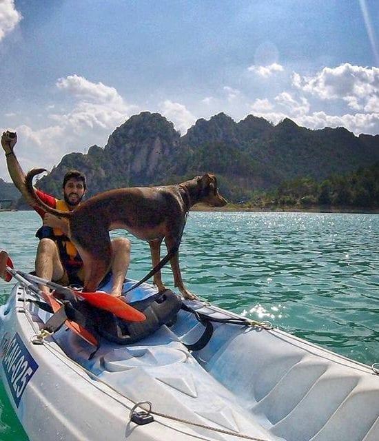 Kayaks dobles para ir con tu perro