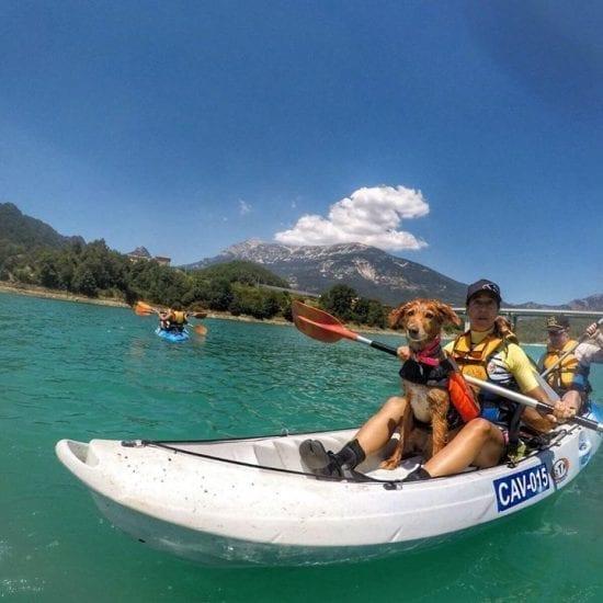 Kayaks cómodos y seguros para tu peludo