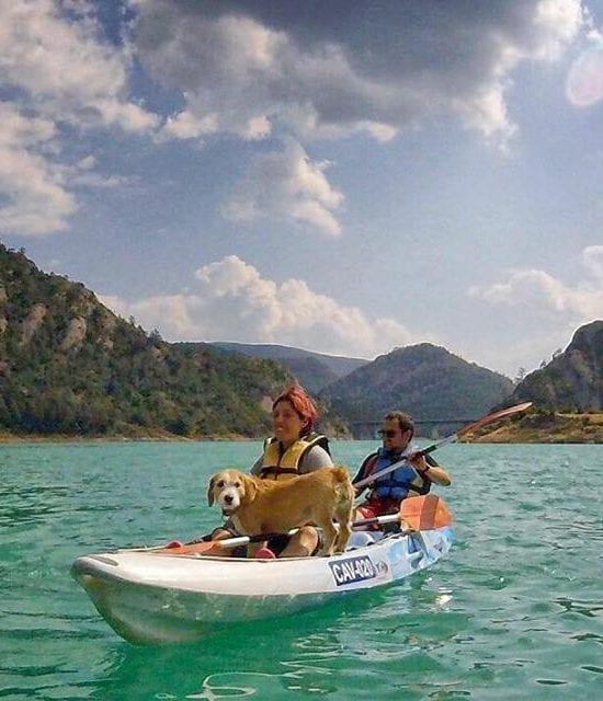 Ruta Kayak con perro en La LLosa del Cavall
