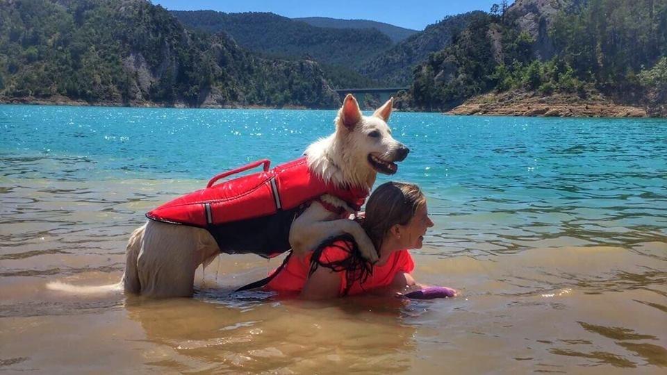 Cani-kayac en LLosa del Cavall