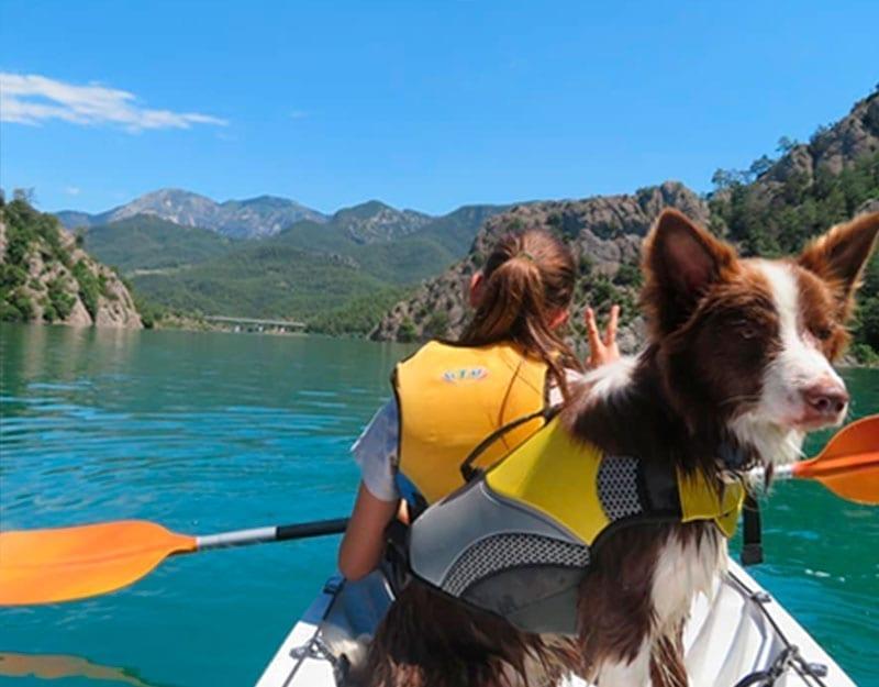 Cani-Kayak, Kayak con perro